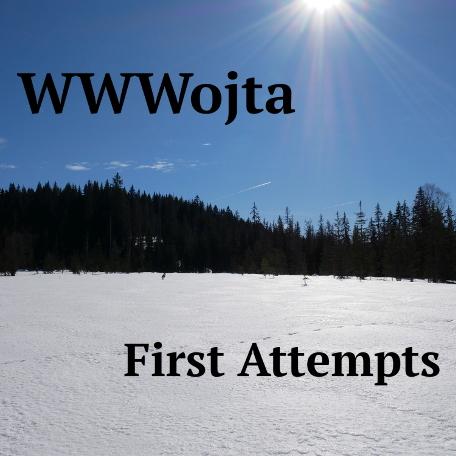 First Attempts - Vojtěch Polášek